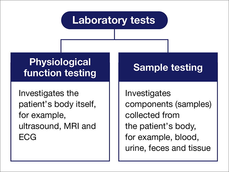 [Laboratory tests] Physiological function testing (Investigates the patient's body itself, for example, ultrasound, CT, MRI and ECG)(Investigates components (samples) collected from the patient's body, for example, blood, urine, feces and tissue)