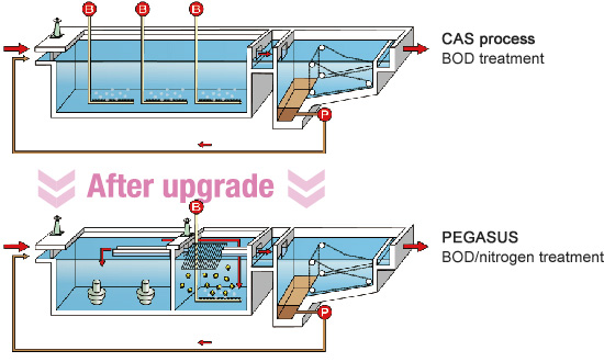 Image: Diagram comparing PEGASUS to existing methods