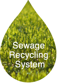 Sewage Recycling System