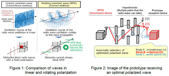 Comparison of waves in linear and rotating polarization