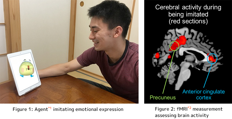 Figure 1: Agent imitating emotional expression, Figure 2: fMRI measurement assessing brain activity