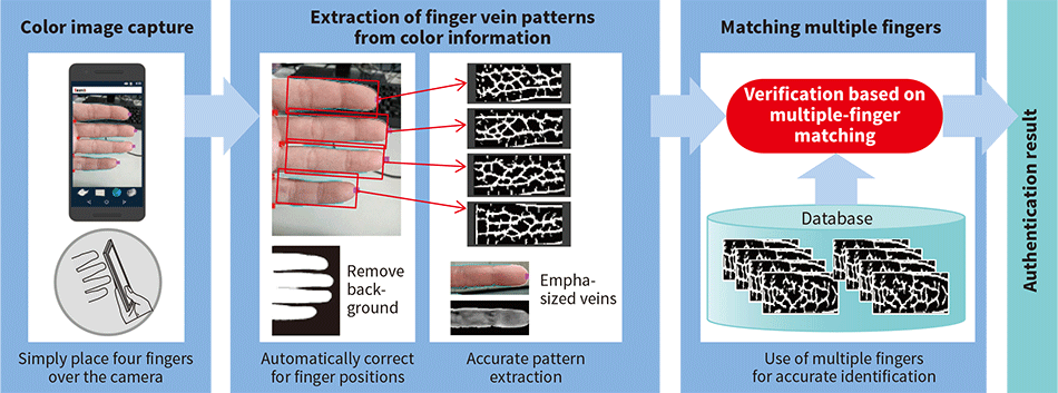 Principles of finger vein authentication using standard smartphone camera
